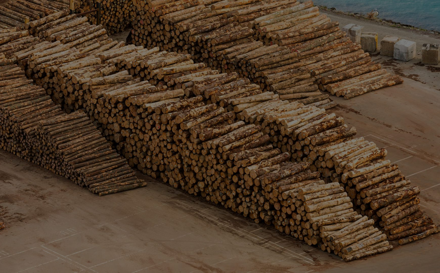 Logs stacked up ready to be shipped